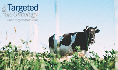 Livestock Antibiotic Shows Promise in Ovarian Cancer in Preclinical Study