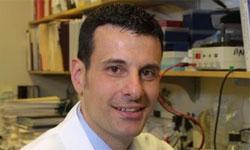 Promising Ibrutinib Responses Demonstrated in Waldenström's Macroglobulinemia